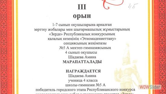 4Б, Шадаева Амина